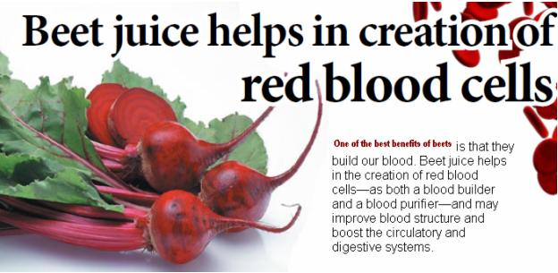 Creation of Red Blood Cells