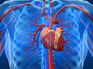 statistics about heart disease